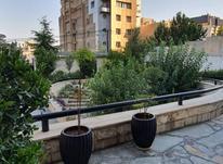 فروش آپارتمان 195 متر در ولنجک در شیپور-عکس کوچک