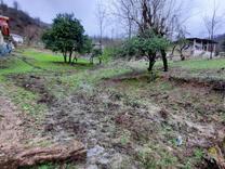 فروش زمین کوهپایه مسکونی 1480 متر در صومعه سرا در شیپور