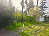 فروش 300 متر زمین شهرکی در بابلسر  در شیپور-عکس کوچک