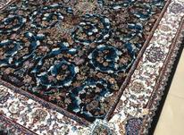 فرش ماهان گرشاسب مستقیم از کارخانه در شیپور-عکس کوچک