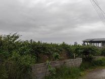 فروش زمین مسکونی 362 متر در تنکابن سند ششدانگ در شیپور