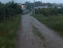 فروش زمین مسکونی 250 متر در بابلکنار .کلاریکلا در شیپور