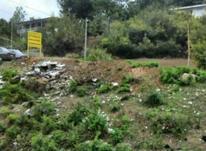 فروش زمین 700 متری بر اصلی پهنه کلا در شیپور-عکس کوچک