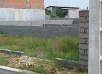 فروش زمین مسکونی 146 متر در علی آباد بابلسر در شیپور-عکس کوچک