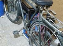 دوچرخه چینی  در شیپور-عکس کوچک