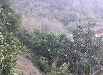 620 زمین سندتکبرگ یالبندان در شیپور-عکس کوچک
