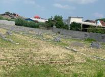 زمین مسکونی 300 متری در فریدونکنار در شیپور-عکس کوچک