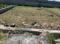 فروش زمین مسکونی 300 متر در فریدونکنار در شیپور-عکس کوچک