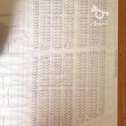 فروش زمین مسکونی 187 متر در قدس در گروه خرید و فروش املاک در تهران در شیپور-عکس7