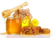 عسل و فرآوردههای عسل در شیپور-عکس کوچک