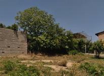 500 متر زمین در سنگتراشان در شیپور-عکس کوچک