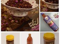 محصولات ارگانیک هلیله  در شیپور-عکس کوچک
