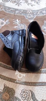 کفش ایمنی(بدون آهنی) در گروه خرید و فروش صنعتی، اداری و تجاری در اصفهان در شیپور-عکس2