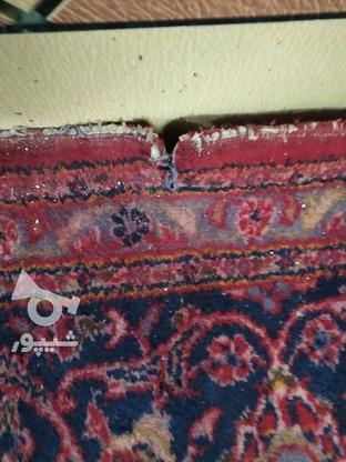 فرش دست باف ده متری در گروه خرید و فروش لوازم خانگی در خوزستان در شیپور-عکس8