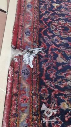 فرش دست باف ده متری در گروه خرید و فروش لوازم خانگی در خوزستان در شیپور-عکس7