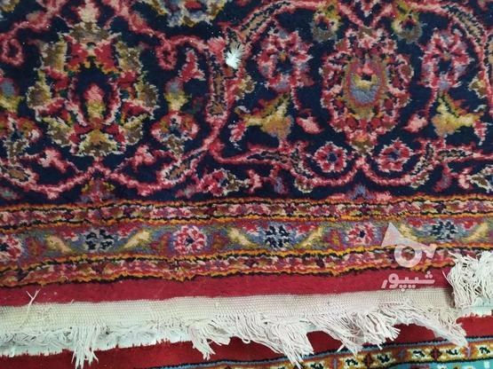 فرش دست باف ده متری در گروه خرید و فروش لوازم خانگی در خوزستان در شیپور-عکس4
