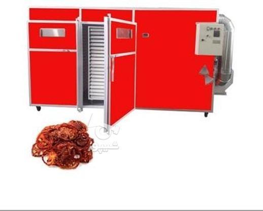 خشک کن گوجه دستگاه خشک کن گوجه فرنگی در گروه خرید و فروش صنعتی، اداری و تجاری در سیستان و بلوچستان در شیپور-عکس1