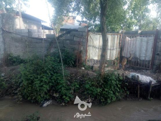 فروش دامداری در گروه خرید و فروش املاک در مازندران در شیپور-عکس4