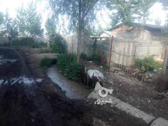 فروش دامداری در گروه خرید و فروش املاک در مازندران در شیپور-عکس3