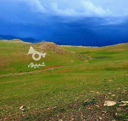 فروش زمین 200 متری مسکونی شهرک هیو در گروه خرید و فروش املاک در البرز در شیپور-عکس1
