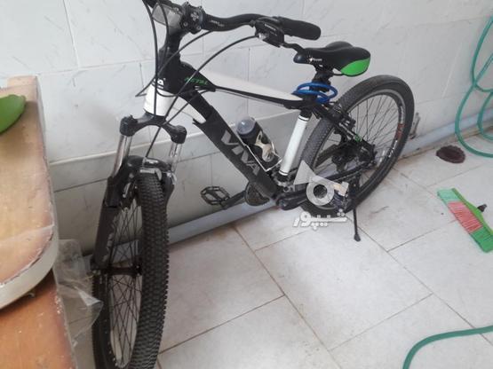 دوچرخه سالم ویوا در گروه خرید و فروش ورزش فرهنگ فراغت در آذربایجان شرقی در شیپور-عکس2