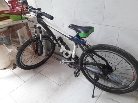 دوچرخه سالم ویوا در گروه خرید و فروش ورزش فرهنگ فراغت در آذربایجان شرقی در شیپور-عکس1