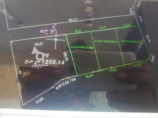 نقشه برداری و نقشه یو تی ام (utm) در گروه خرید و فروش خدمات و کسب و کار در مازندران در شیپور-عکس1