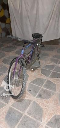 دوچرخه کوهستان ساده در گروه خرید و فروش ورزش فرهنگ فراغت در اصفهان در شیپور-عکس4