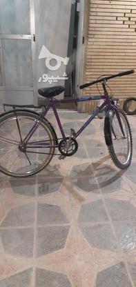 دوچرخه کوهستان ساده در گروه خرید و فروش ورزش فرهنگ فراغت در اصفهان در شیپور-عکس2