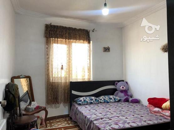 فروش آپارتمان 84 متری قائم محله در گروه خرید و فروش املاک در مازندران در شیپور-عکس9