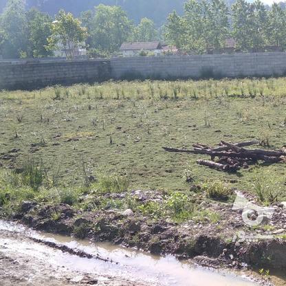 280 متر زمین پیرهرات استخر در گروه خرید و فروش املاک در گیلان در شیپور-عکس1