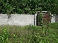 زمین 275 متری دوردیوار مسکونی روستایی مجوزدار در شیپور-عکس کوچک
