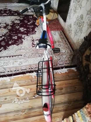 دوچرخه کلکسیونی 24 المانی اصل در گروه خرید و فروش ورزش فرهنگ فراغت در تهران در شیپور-عکس3