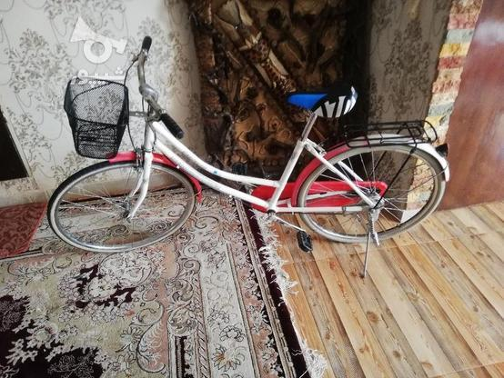 دوچرخه کلکسیونی 24 المانی اصل در گروه خرید و فروش ورزش فرهنگ فراغت در تهران در شیپور-عکس4