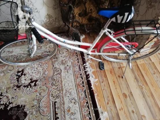 دوچرخه کلکسیونی 24 المانی اصل در گروه خرید و فروش ورزش فرهنگ فراغت در تهران در شیپور-عکس1