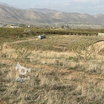 فروش باغچه 441 متر در جابان در گروه خرید و فروش املاک در تهران در شیپور-عکس6