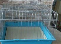 قفس باکس ضخیم حمل و نگهداری سگ پاپی گربه خوکچه هندی خرگوش در شیپور-عکس کوچک