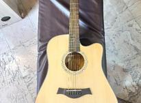 گیتار آگوستیک در شیپور-عکس کوچک