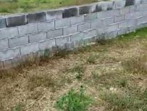 زمین سندار مسکونی 220 متری در سرخرود در شیپور