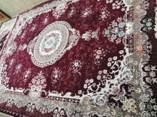 فروش قالی500شانه در شیپور