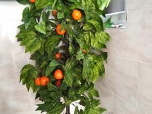 درخت مصنوعی پرتقال در شیپور