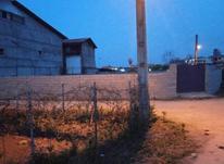 فروش زمین مسکونی 300 متر در تالش محدوده دادگستری در شیپور-عکس کوچک