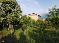 زمین خانه سری در گزغربی در شیپور-عکس کوچک