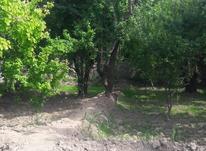 باغ در کردزار شهریار  در شیپور-عکس کوچک