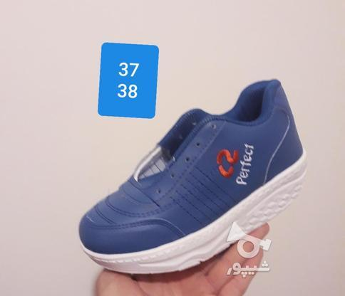 کفش پیاده روی پرفکت تک سایز در گروه خرید و فروش لوازم شخصی در آذربایجان شرقی در شیپور-عکس7