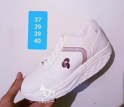 کفش پیاده روی پرفکت تک سایز در گروه خرید و فروش لوازم شخصی در آذربایجان شرقی در شیپور-عکس1