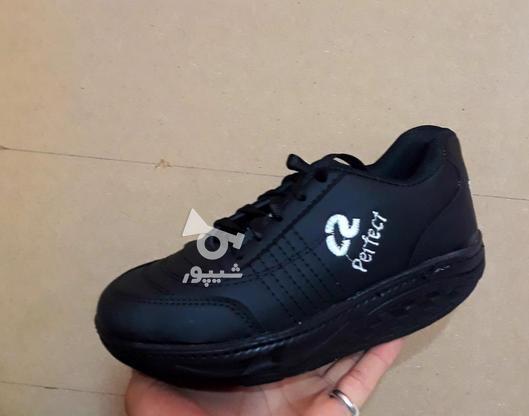 کفش پیاده روی پرفکت تک سایز در گروه خرید و فروش لوازم شخصی در آذربایجان شرقی در شیپور-عکس3