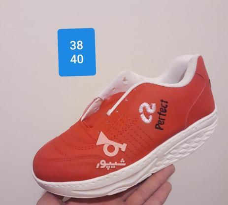 کفش پیاده روی پرفکت تک سایز در گروه خرید و فروش لوازم شخصی در آذربایجان شرقی در شیپور-عکس6