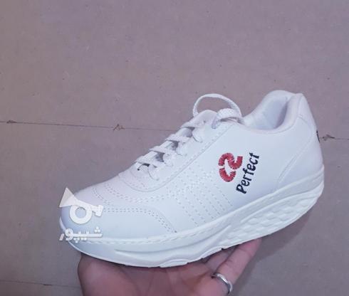 کفش پیاده روی پرفکت تک سایز در گروه خرید و فروش لوازم شخصی در آذربایجان شرقی در شیپور-عکس2