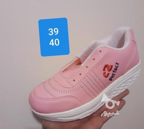 کفش پیاده روی پرفکت تک سایز در گروه خرید و فروش لوازم شخصی در آذربایجان شرقی در شیپور-عکس4